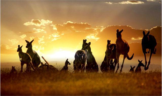 australia-travel
